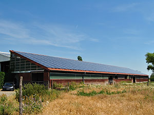 Kampagnenbild Solarkraft Tangerland II