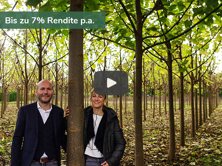 Kampagnenbild Green Investments - your tree - your future